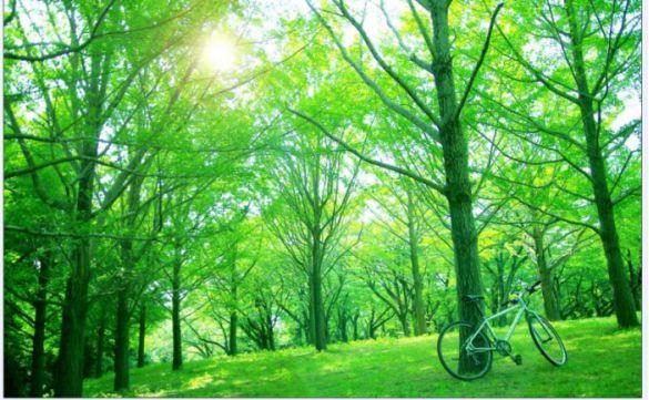 环保部发布四项环境监测最新标准