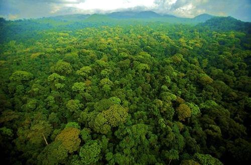 环境污染之环境检测对数据中心的重要性
