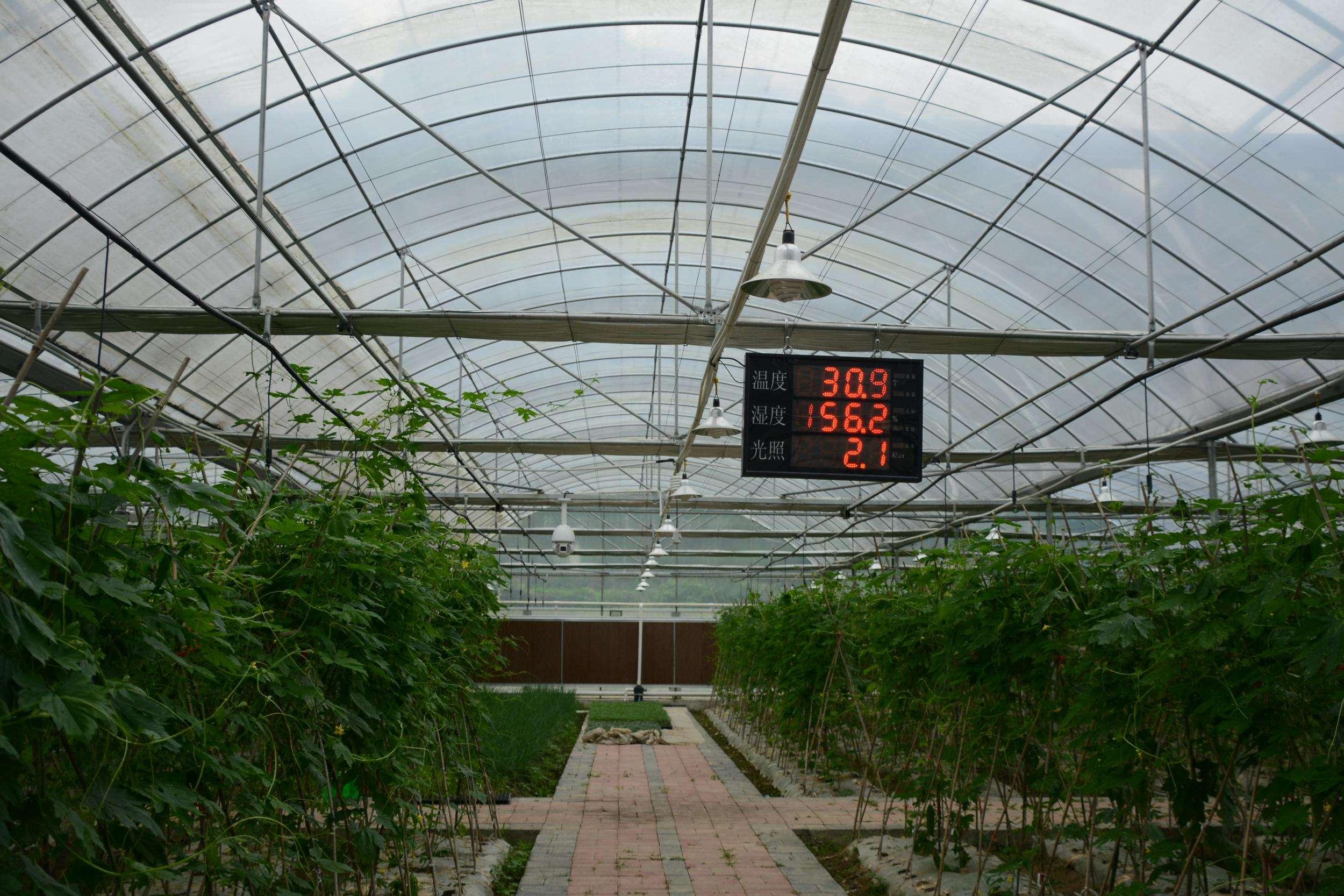 农业使用温室大棚智慧【环境监控系统】解决方案如何建立?