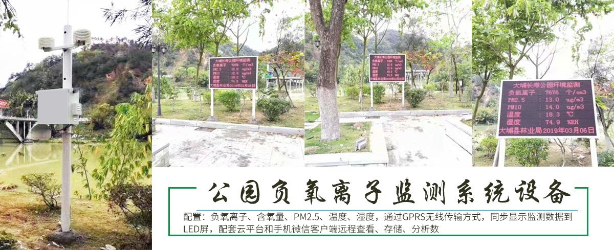 梅州大埔县大埔长寿公园负氧离子监测系统设备