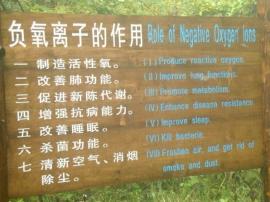 森林大环境监测为什么要做负氧离子监测项?.jpg