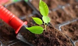 土壤墒情环境监测/检测的过程是什么样的.jpg