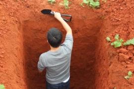 土壤墒情环境监测系统仪器采样点如何进行布设?.jpg