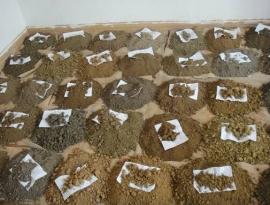 土壤墒情环境监测/检测如何正确采样.jpg
