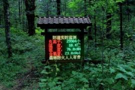 景区环境监测站负氧离子远程监测系统设备.jpg